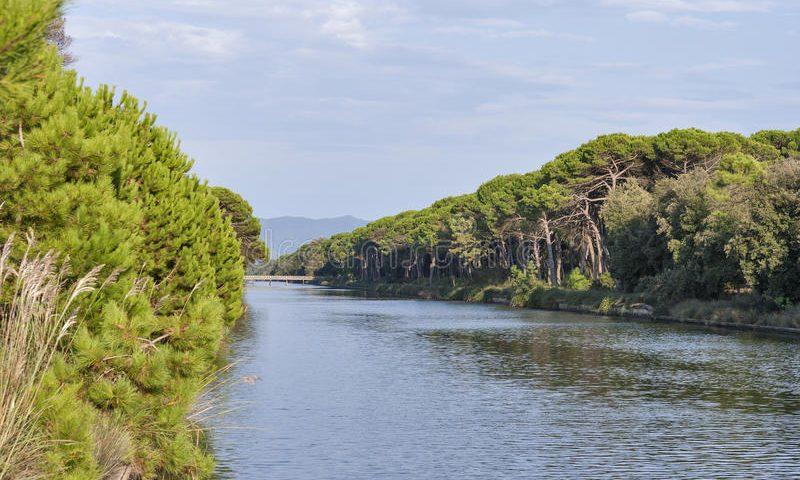 Parco regionale di San Rossore